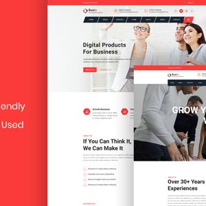 Bosto – Business Consulting PSD Template